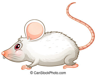 A white mouse - Illustration of a white mouse on a white...