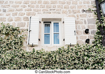 A white plastic window with open shutters on the wall above the clematis blooming around the house.