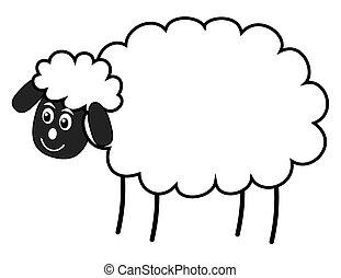 a white sheep