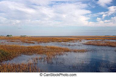 A wide expanse of beautiful coastal wetland under blue skies in the Cape Romain National Wildlife Refuge along the South Carolina coast