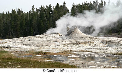 wide shot of giant geyser in yellowstone