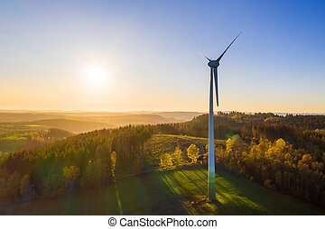 a wind turbine in the forest in the evening sun