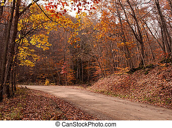 A winding country road