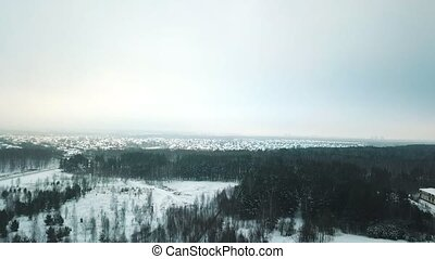 A winter forest and a village in the distance. An view from...