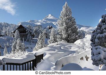 a, winter wonderland