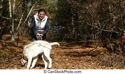 A woman and a child play with a dog on fallen leaves....