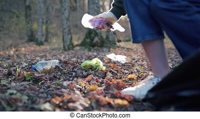 A woman collects dirty garbage on fallen leaves, close-up. Ecosystem pollution, plastic waste in the forest