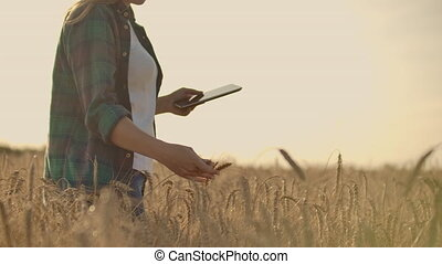 A woman farmer with tablet. Smart farming and digital...