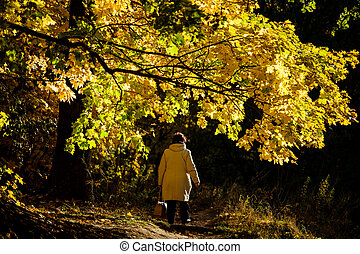 A woman in a light jacket is walking along a yellow maple avenue