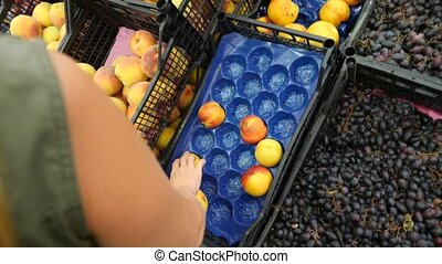 A woman in a supermarket on a vegetable shelf, buys...