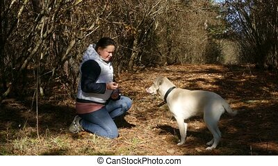 A woman is training a young dog and giving her food as a...