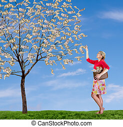a woman reaching up picking money off a tree - a smiling...