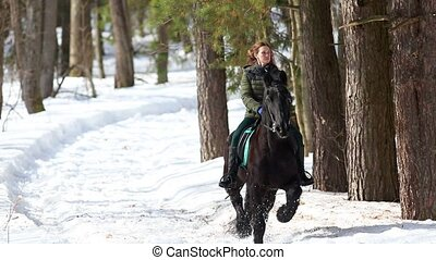A woman riding a dark brown horse in the forest at sunny...