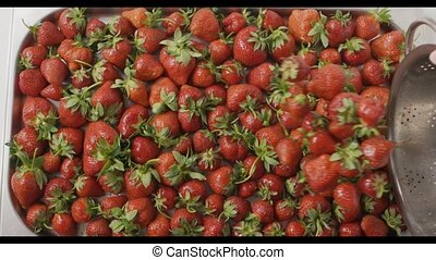 A woman throw some strawberries from steel colander on tray...