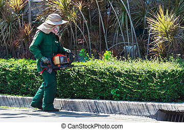 A Woman Trimming Hedge with Trimmer Machine - A Woman...