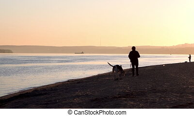 A woman walking a dog on the beach. Women with a dog at ...