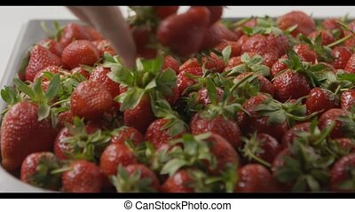 A woman's hand throws some strawberries on a tray with...