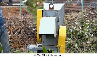 A wood cutting machine tool cuts twigs with leaves into...