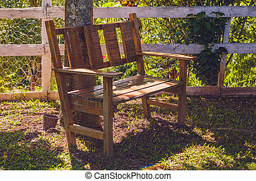 A wooden bench by the tree