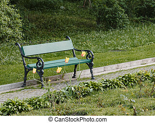 A wooden bench with yellow tulips in a spring garden