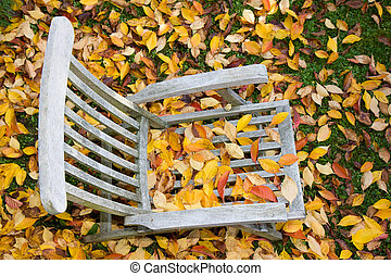 a wooden deckchair covered with leaves in autumn