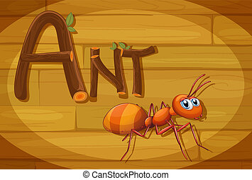 A wooden frame with an ant