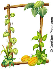 A wooden frame with plants
