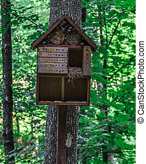 A wooden house for squirrels in the form of a birdhouse on a tree the forest.