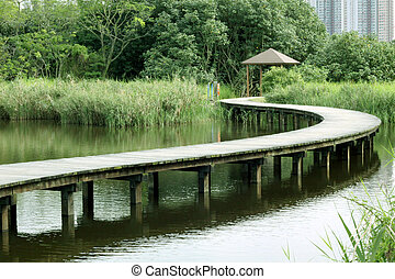 A wooden path in wetland park