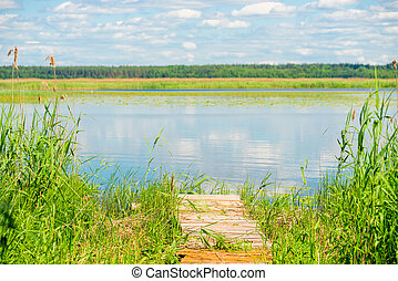 a wooden pier, overgrown with grass on the shore of a beautiful scenic lake