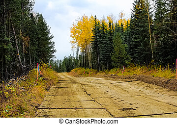 A wooden road made out of rig mats through muskeg