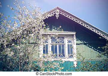 A wooden village house of blue color with a carved roof, next to which a cherry Bush