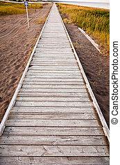 A wooden walkway along the shore