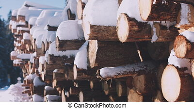 A woodpile of chopped lumber in the forest covered with snow...