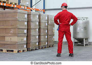 checking inventory stocks
