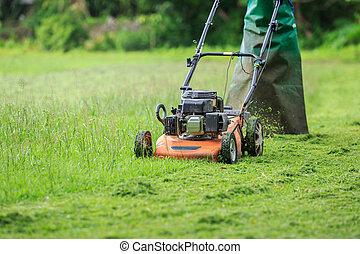 A worker mowing grass in the garden