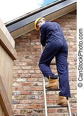 A workman up a ladder