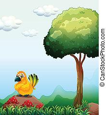 A yellow bird above the rock near the mushrooms