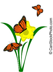 A yellow Daffodil flower with butterflies