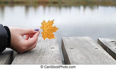 A yellow leaf in the girls hand on a wooden bridge by the lake in the park. Autumn, Thanksgiving and lifestyle concept. A fallen yellow leaf in his hand. Nature.