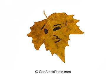 A yellow leaf with the image of a face kiss is not. Isolate