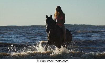 A young beautiful blonde woman in bikini in the sea riding a brown horse. Trotting