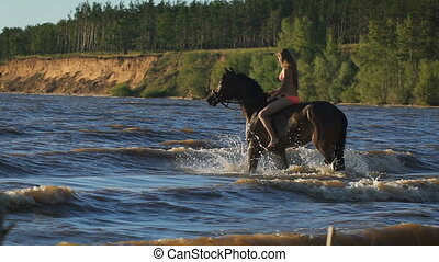 A young beautiful blonde woman in bikini in the sea riding a brown horse