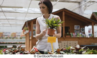 A young beautiful girl fixes flowers in the garden center. Brunette woman buys flower pots.