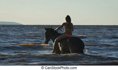 A young beautiful sexy blonde woman in bikini in the sea riding a brown horse. View from the back