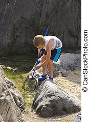 A young boy at the seaside fishing in rock pools with a net