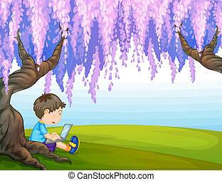 A young boy under a big tree