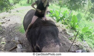 A young European girl sits astride an elephant barefoot in...