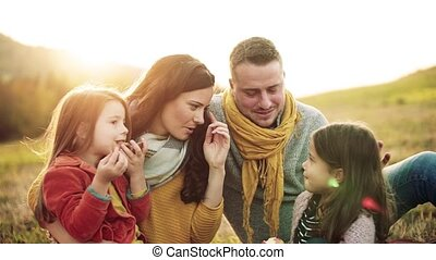 A young family with two small children having picnic in...