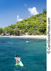 A young female snorkeler at an island coral reef with turtle. La digue, seychelles.